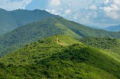 Hong Kong trail beautiful views and nature. Dragon's back Stock Photography