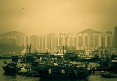 Hong kong Typhoon Shelter Stock Images