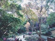 Hong Kong University lizenzfreie stockbilder