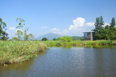 Hong Kong Wetland Park Stock Photo