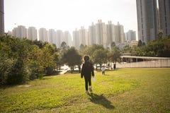 Hong- Kongfeuchtgebietspark Stockbild
