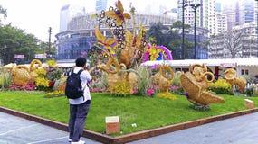 Hong- Konginternationall Blumenschau 2015 Lizenzfreies Stockbild