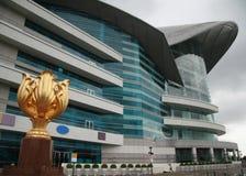 Hong kongu bauhinia złoty symbol obraz royalty free