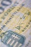 Hongaarse duizend macro Royalty-vrije Stock Fotografie