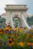 Hongaarse Kettingsbrug bij dag naast bloemen bij de zomer Stock Fotografie