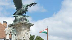 Hongaarse Vlag in Buda Castle stock footage