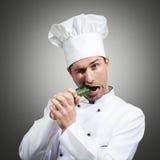 Hongerige chef-kok stock foto's