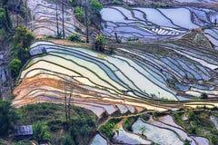 Honghe Hani tarasy Zdjęcie Stock