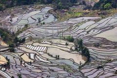 Honghe Hani tarasy Fotografia Stock