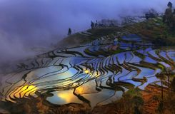 Honghe Hani Terraces