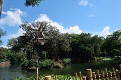 Hongkong Disneyland stock fotografie