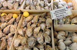 HONGKONG - JANUARI 04: Ny skaldjur i supermarket Royaltyfri Bild