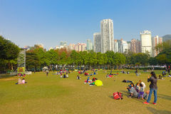 HONGKONG KINA - JANUARI 26, 2017: Folkmassan av folk som vilar på gräset, i victoria, parkerar i Hong Kong Victoria Park Royaltyfria Bilder