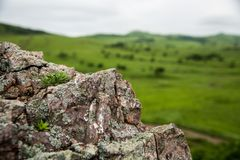 Hongo en la roca y el valle foto de archivo
