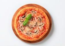 Hongos de la pizza Imagenes de archivo