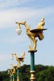 Hongthong Royalty Free Stock Image