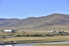 Hongyuan prairie scenery Stock Images