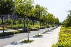 Hongze road scenery royalty free stock photo