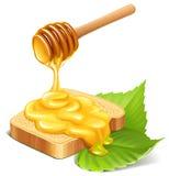 Honig Lizenzfreie Stockbilder