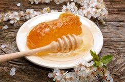 Honig-, Bienenwaben- und Aprikosenblumen Lizenzfreies Stockfoto