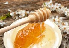 Honig-, Bienenwaben- und Aprikosenblumen Lizenzfreie Stockfotografie