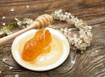 Honig-, Bienenwaben- und Aprikosenblumen Stockbild