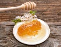 Honig-, Bienenwaben- und Aprikosenblumen auf hölzernem Hintergrund Lizenzfreies Stockbild