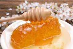 Honig-, Bienenwaben- und Aprikosenblumen auf hölzernem Hintergrund Lizenzfreie Stockbilder