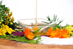 Honig-Blumen-Badekurort Lizenzfreie Stockbilder