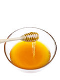 Honig-Bratenfett Stockfoto