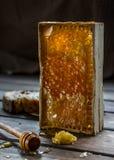 Honig in den Bienenwaben lizenzfreie stockfotos