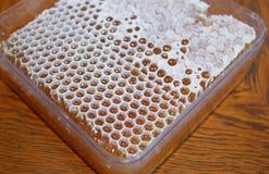 Honig in der weißen Bienenwabe lizenzfreies stockbild