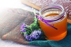 Honig in einem Glasgefäß und Bienenwaben und Blume von einem Phacelia Lizenzfreies Stockbild