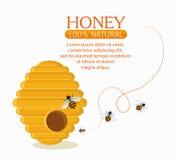 Honig gesund und Design des biologischen Lebensmittels vektor abbildung