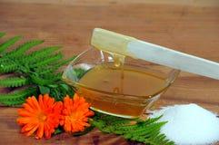 Honig-Karosserien-Zuckern Lizenzfreies Stockbild