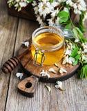 Honig mit Akazienblüten Lizenzfreie Stockfotos