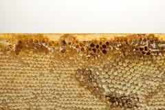 Honig mit Bienenwabe auf Holztisch Stockfoto