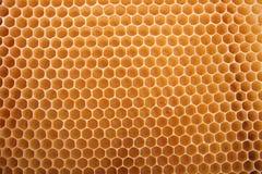 Honigbeschaffenheit stockfotografie