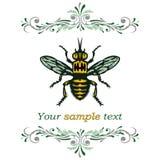 Honigbiene. Lizenzfreie Stockfotos