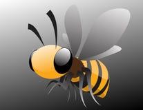 Honigbiene Lizenzfreies Stockbild