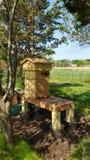 Honigbienen auf Bienenstock Stockbild