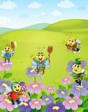 Honigbienen in der Natur stock abbildung