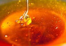 Honigbratenfett in ein bowl.JH Lizenzfreie Stockbilder