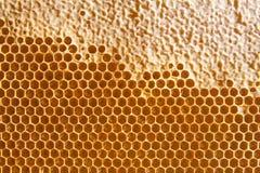 Honigkammhintergrund oder -beschaffenheit Stockfotografie