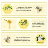 HonigKennsatzfamilie für Fahne Lizenzfreie Stockbilder