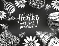 Honigrahmen gezeichnet mit Kreide auf Tafel Konzipieren Sie Elementset Ausführliches graviert Gezeichneter Vektor der Weinlese Ha stock abbildung