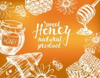 Honigrahmen gezeichnet mit Kreide auf Tafel Konzipieren Sie Elementset Ausführliches graviert Gezeichneter Vektor der Weinlese Ha lizenzfreie abbildung