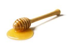 Honigschöpflöffel Lizenzfreies Stockfoto