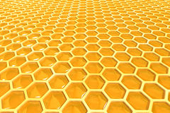 Honigzellen lizenzfreie stockfotografie