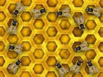 Honing stock illustratie